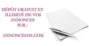 Les sites d'annonces en Luxembourg dans Achat - Vente annonces-101-300x157